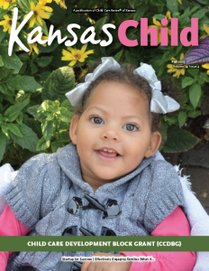 Kansas Child Fall 2015